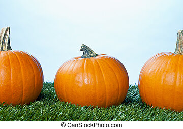 cropped view of halloween pumpkins
