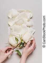 hand with rose flower