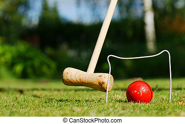 Croquet in the garden - A game of croquet on a nice day