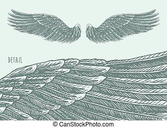 croquis, ange, illustration, vecteur, gravé, ailes