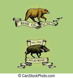 croquis, animaux, logos, vieux, ours, main, verrat, emblèmes, retro, vendange, sauvage, dessiné, bannières, style, rubans, ou, insignes, engraving.