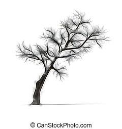 Croquis feuilles arbre isol mort sans fond blanc - Croquis arbre ...