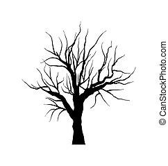 Croquis hiver feuilles arbre sans fond blanc - Croquis arbre ...