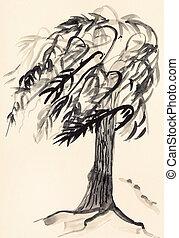 croquis, de, arbre saule