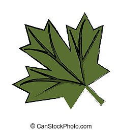 croquis, feuille, canadien, signe, vert, érable