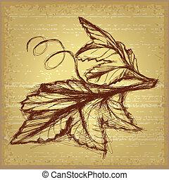 croquis, feuilles raisin