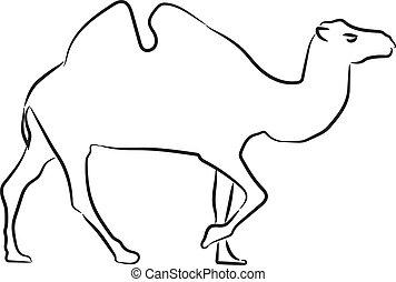 croquis, illustration., chameau, style, silhouette., vecteur, dessiné, main