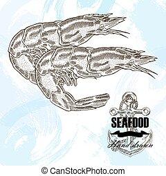 croquis, illustration., vendange, fruits mer, main, arrière-plan., vecteur, dessiné, crevette