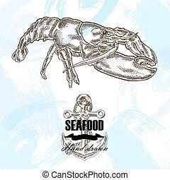 croquis, illustration., vendange, fruits mer, main, arrière-plan., vecteur, homard, dessiné