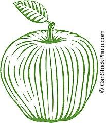 croquis, pomme, vectorized, illustration, vert, encre