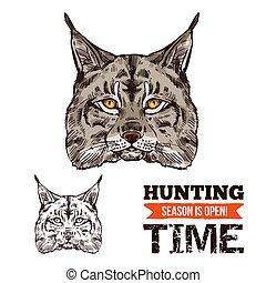 croquis, prédateur, chat, animal, lynx, sauvage, lynx, ou