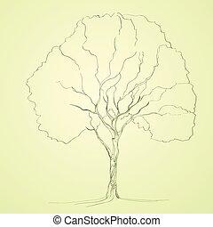 croquis, silhouette, arbre, vecteur, vert, ligne