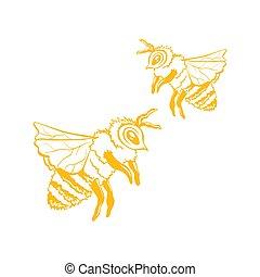 croquis, vecteur, contour, deux, jaune, miel, abeilles