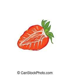 croquis, vecteur, fraise, illustration, style