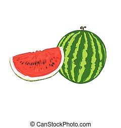 croquis, vecteur, pastèque, illustration, style