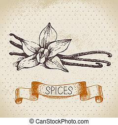 croquis, vendange, vanille, main, herbes, fond, dessiné,...