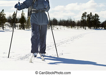 Cross Country Landscape - A skier on a wintery snow filled...