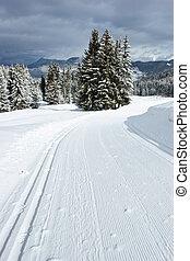 Cross-country ski track - Freshly groomed empty...
