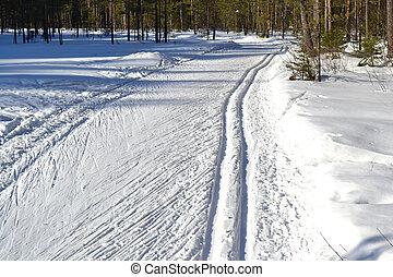 Cross-country ski track in Leningrad region, Russia