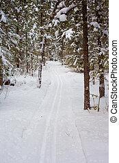 Cross-country ski track