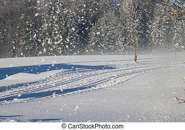 Cross Country Ski Tracks in Austria, Winter Mountains.