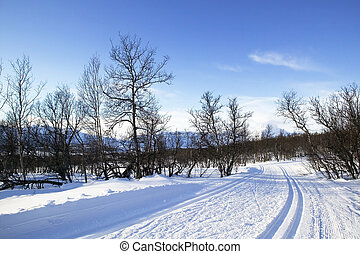 Cross Country Ski Trail - Cross country ski trails in the ...