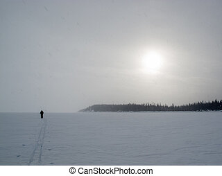 Cross-country skier barren arctic winter landscape