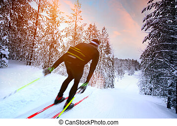 Cross-country skiing in Sweden