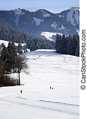 cross-country skiing in the bavarian alps oberstdorf
