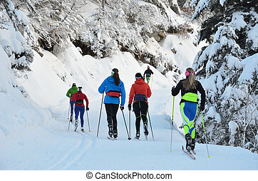 Cross-country skiing in the snowy forest