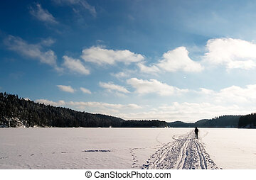 Cross Country Skiing - Cross country ski trails on a...