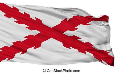 Cross Of Burgundy Flag Isolated Seamless Loop - Cross Of...
