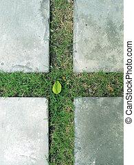 cross on the yard