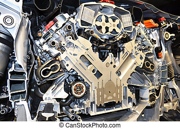 Cross section of a car motor