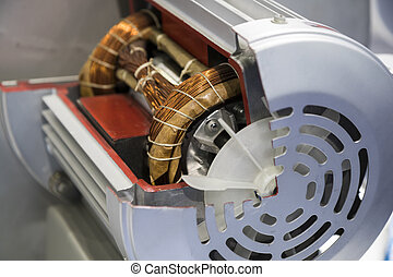 Cross Section of electrical motor