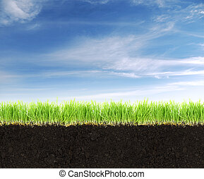 Cross-section of land with soil, grass and blue sky.