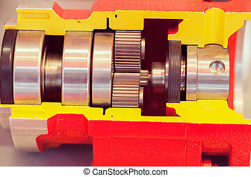cross-section of the vertical cylindrical gear - section of...
