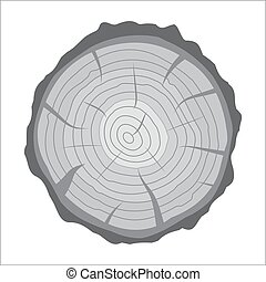 Cross section of tree stump or trunk. Wood cut. Vector...