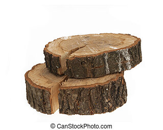 Cross section of tree trunk showing growth rings on white...