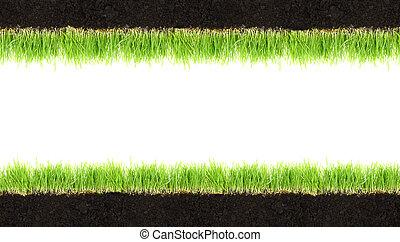 cross-section, ramme, i, jord, og, græs, isoleret, på hvide