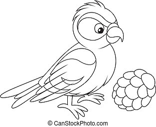 crossbill with a cone, black and white illustration