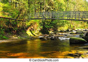 crossing over creek