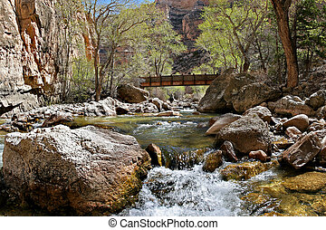 a small foot-bridge spans shell creek in the bighorn mountains, wyoming
