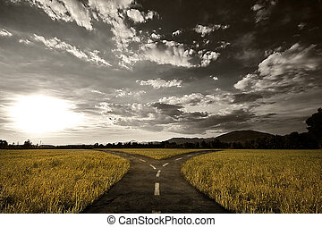 Crossroad in rural landscape under dusk sky