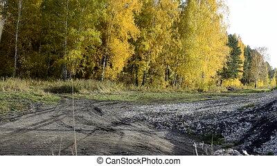 crossroads, las, jesienny