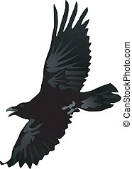 crow 2 - vector image of a crow
