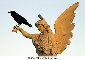 crow and angel - black crow sitting on white angel sculpture...
