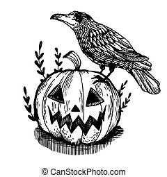 Crow and pumpkin engraving vector illustration