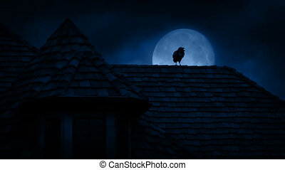 Crow On Gothic Rooftop At Night - Crow on gothic building...