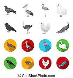 Crow, ostrich, chicken, peacock. Birds set collection icons in monochrome, flat style bitmap symbol stock illustration web.